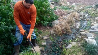 Pond cleaning and maintenance