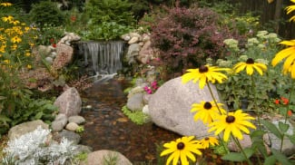 Pond repair and installation
