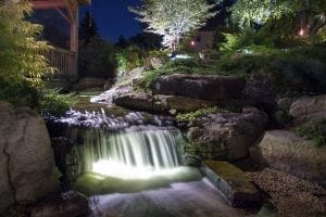 Atlanta Koi Pond Installation
