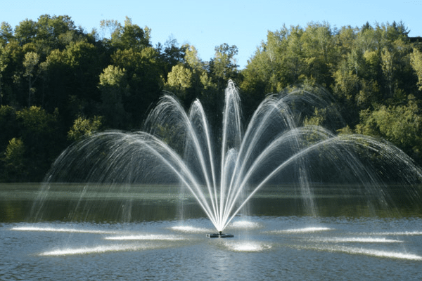 fountain in a large pond