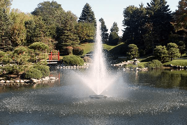 fountain surrounded by landscape