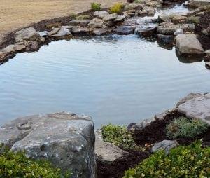 Pond Care in the Winter by Universal Aquatics / Atlanta, GA