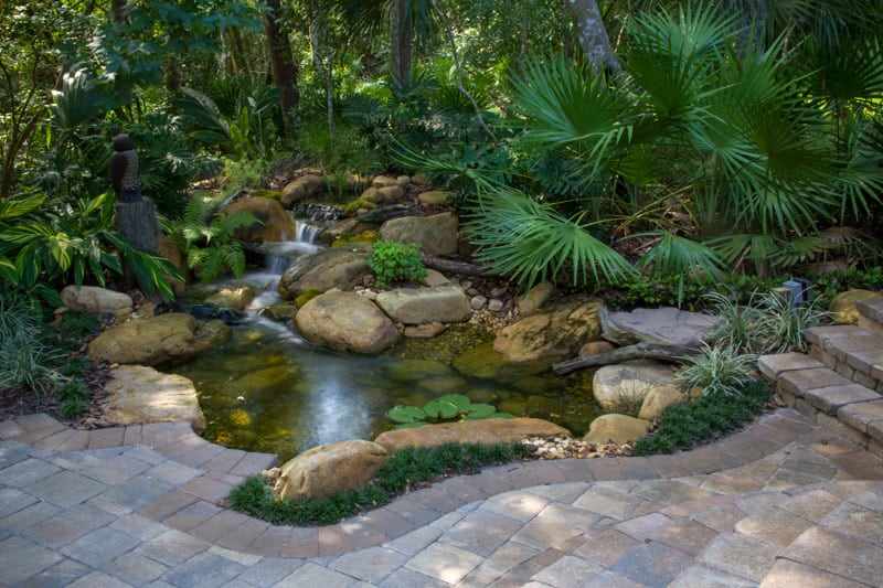 How to stop koi pond algae