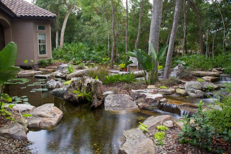 custom backyard pond