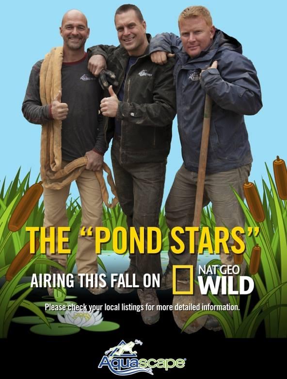 The Pond Stars