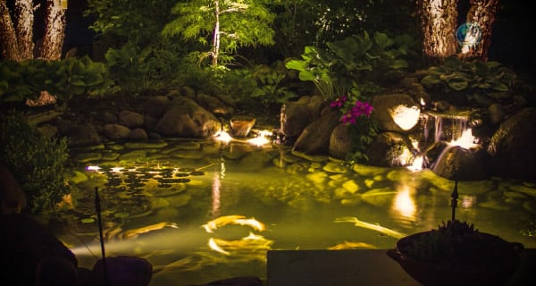 Pond & Garden Lights